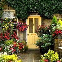Входная дверь: фото