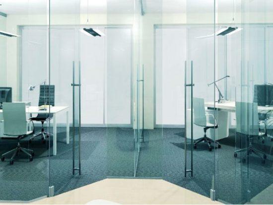 Стеклянные двери для офиса: фото